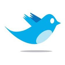 Twitter Bird Logo by photologue_np